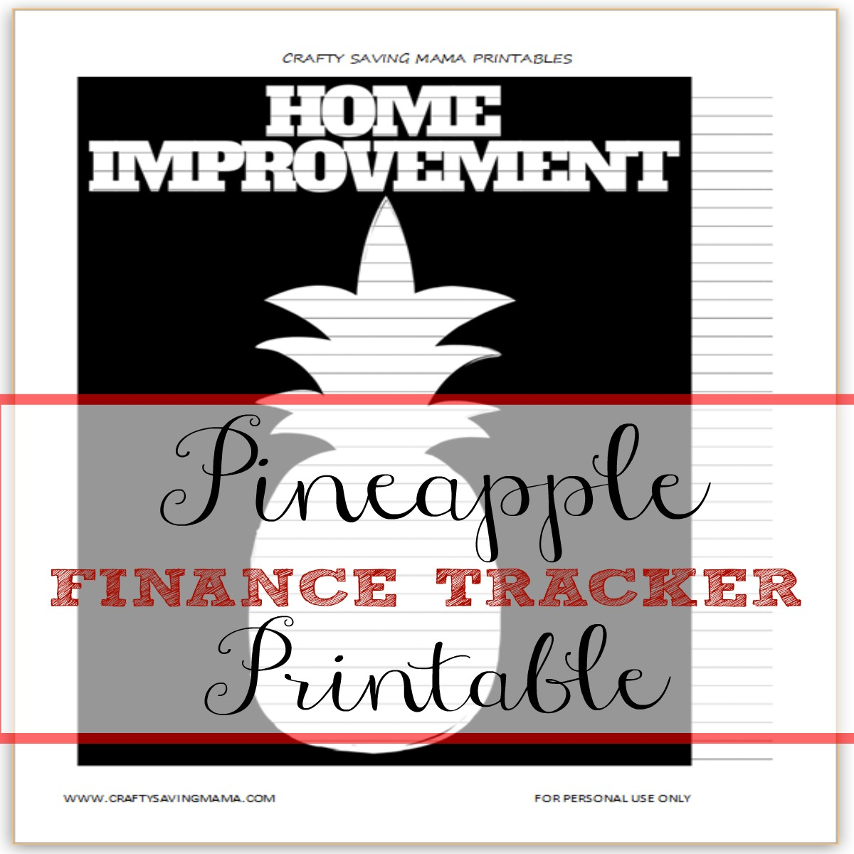 pineapple home improvement finance tracker